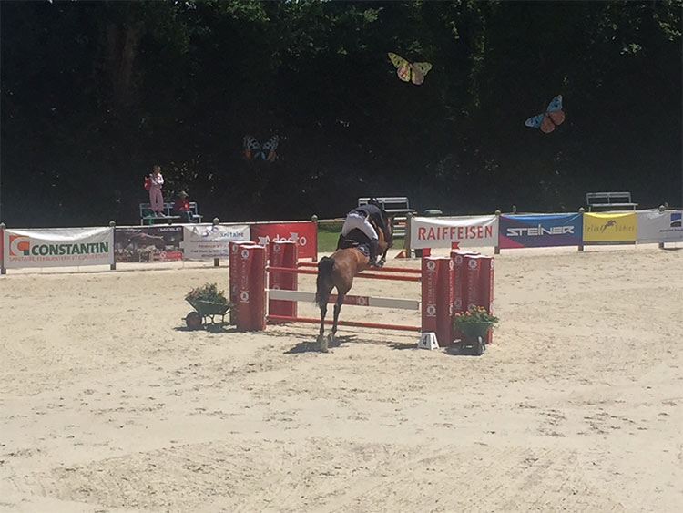 jumping-cheseaux-7