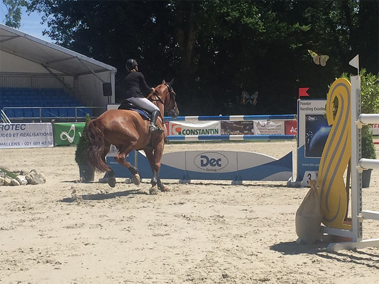 jumping-cheseaux-10
