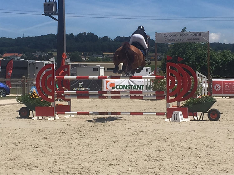 jumping-cheseaux-11