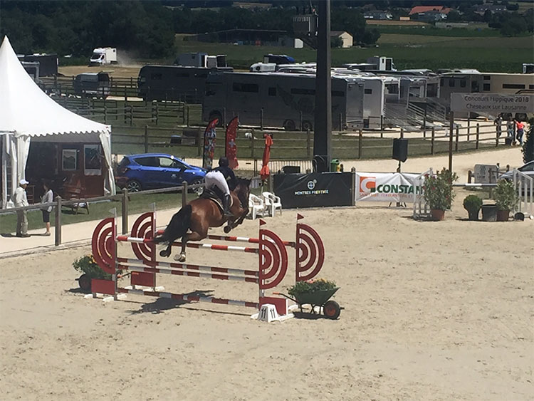 jumping-cheseaux-6
