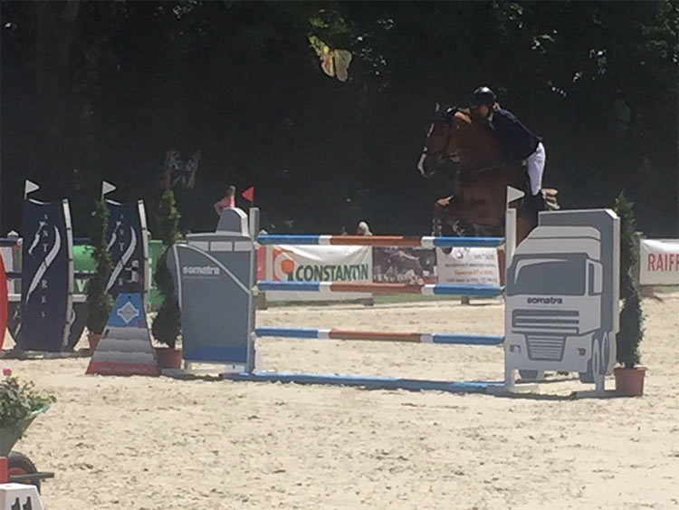 jumping-cheseaux-8